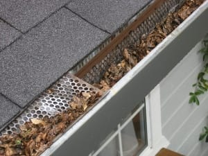 a gutter with leaves